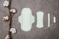棉花枝杈、月经垫和棉塞的安排顶视图  免版税库存图片