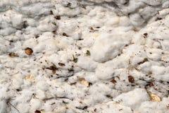 棉花模块的特写镜头 免版税库存图片