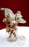 棉花花瓶 免版税图库摄影