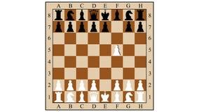 棋三移动的组合伙伴 库存例证