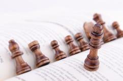 棋子和书 库存照片