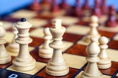 棋盘和棋子,在棋枰的木棋子彩色照片  白女王/王后和国王前景的如此是  免版税库存照片