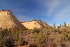 棋盘峭壁mesa国家公园砂岩风景美国犹他视图zion 免版税库存照片
