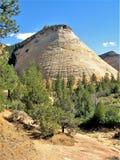 棋盘Mesa在锡安国家公园 图库摄影