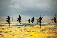棍子的传统渔夫在日落在斯里兰卡 免版税库存图片