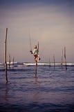 棍子的斯里兰卡的传统渔夫在印度洋 免版税图库摄影
