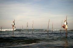 棍子的斯里兰卡的传统渔夫在印度洋 免版税库存照片