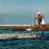 棍子的斯里兰卡的传统渔夫在印度洋 库存照片