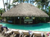 棒哈密尔顿海岛游泳池边 库存图片