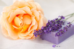 棒淡紫色玫瑰色肥皂 库存图片