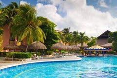 棒热带池的游泳 免版税库存照片
