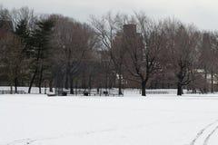 棒球在中央公园 免版税库存照片