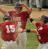 棒球庆祝同盟高级系列世界 库存照片