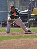 棒球手套同盟高级系列世界 库存照片