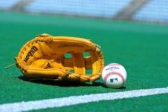 棒球手套和球在领域 库存图片