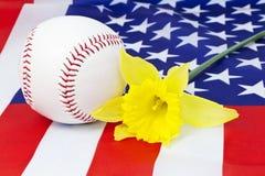 棒球春天 库存图片