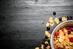 棒谷物节食健身 Muesli用各种各样的野生莓果 免版税库存照片