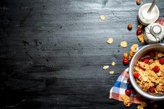 棒谷物节食健身 Muesli用成熟莓果和牛奶 图库摄影