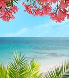 棕榈、花和沙子 免版税库存照片