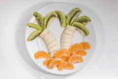 棕榈做用果子 免版税库存照片