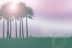 棕榈剪影 免版税图库摄影