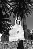 棕榈包围的老石教会单色照片  库存图片