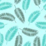 棕榈叶传染媒介无缝的样式背景 库存例证