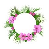 棕榈叶和桃红色花框架和圆的卡片 免版税库存照片