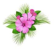 棕榈叶和桃红色野花构成 免版税库存图片