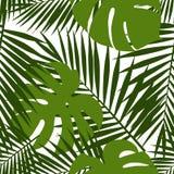 棕榈叶和monstera剪影无缝的样式 留给热带 库存照片