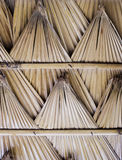 棕榈叶屋顶 免版税库存照片