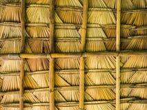 棕榈叶屋顶 库存图片
