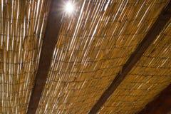 棕榈叶视图遮阳伞从下面与发光通过它的太阳 免版税库存图片