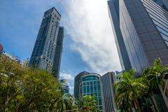 棕榈和摩天大楼在新加坡街上 免版税库存照片