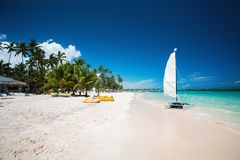 棕榈和热带海滩在蓬塔Cana,多米尼加共和国 图库摄影
