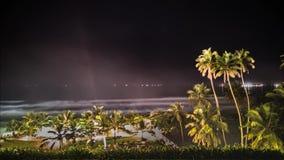 棕榈夜云彩视图Timelapse 4k 股票视频