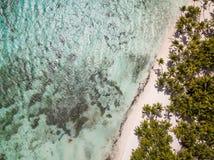 棕榈寄生虫视图和白色沙子在Saona海岛靠岸 库存照片