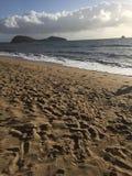 棕榈小海湾,澳大利亚 免版税库存图片