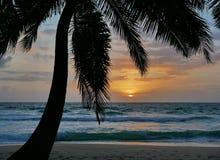 棕榈日落海滩普吉岛 免版税库存图片