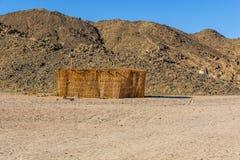 棕榈枝杈流浪的大厦在离洪加达市,埃及不远的一片沙漠 免版税图库摄影