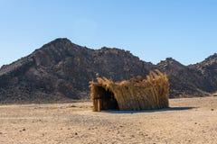 棕榈枝杈流浪的大厦在离洪加达市,埃及不远的一片沙漠 免版税库存照片