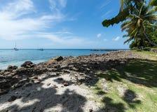 棕榈树、小船和蓝色海 免版税库存照片