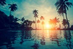 棕榈树剪影在一个热带海滩的水中反射了在黄昏 旅行 图库摄影