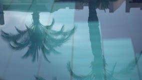 棕榈树剪影在慢动作的水池水反映的 影视素材