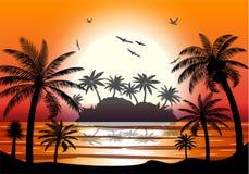 棕榈树剪影在海滩的 免版税库存照片