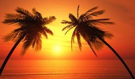 棕榈树剪影热带海洋日落 免版税图库摄影