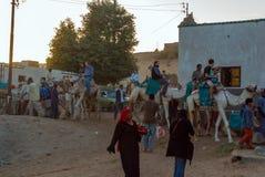 棕榈树包围的Nubian村庄的典型的白色房子在开罗埃及附近和在银行 库存照片