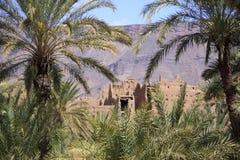 棕榈树包围的一个古老堡垒的废墟 库存图片