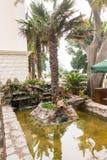 棕榈树和一个喷泉在江边Petrovac,黑山 免版税库存照片