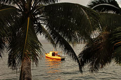 棕榈树和一条小船在日落, Savusavu港口剪影, 免版税图库摄影